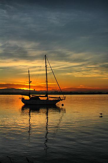Harbor Sunrise by Barbara  Brown
