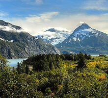 Portage Glacier Area - Alaska by Dyle Warren