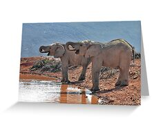 In Sync.... Greeting Card