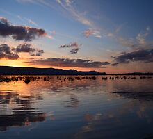 Lake Fyans at Sunset by Barbara Jones