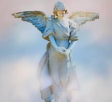 Look Homeward Angel by missmoneypenny