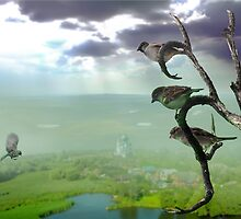 Birds Life by Igor Zenin