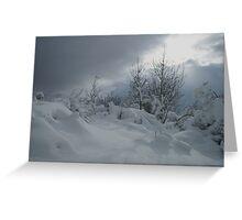 Covered in Snow Greeting Card