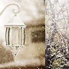 Winter Diptych by ©Maria Medeiros