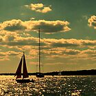 Sailing at Sunset, Narragansett Bay by Jane Neill-Hancock