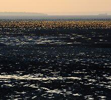 Flat Holm by MWhitham