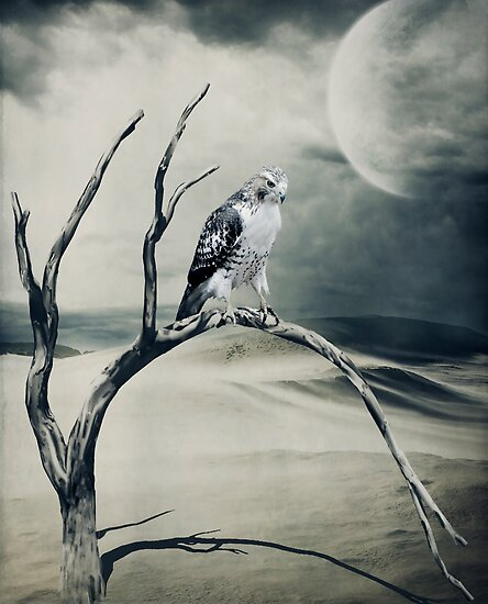 Dust Bowl... by Karen  Helgesen