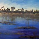Last light Okavango Swamp by Terri Maddock