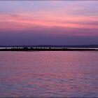 Sam Rayburn Sunrise by freevette