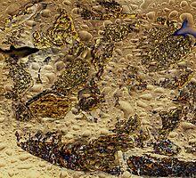 STRANGENESS AT THE BOTTOM OF THE OCEAN by Sherri     Nicholas
