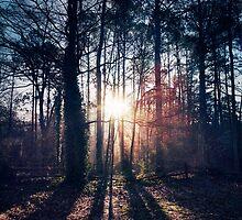 Atlanta Morning by imagerystorm