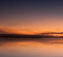 Swan Lake - Badgerys Creek, NSW by Malcolm Katon