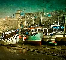 Safe Harbour by Tarrby