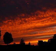 Castle Sunset by shsight