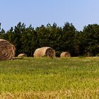 Harvest of Hay by KRphotog