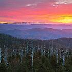 Dawn's End - Clingman's Dome, Great Smoky Mountains National Park by Matthew Kocin