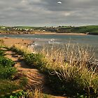 Bantham Sands from Bigbury by moor2sea