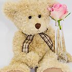 Teddy Bear With A Pink Rose by daphsam