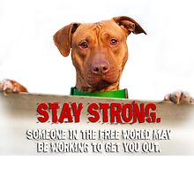 HeARTs Speak Stay Strong Pit Bull by HeARTsSpeak