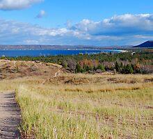 Path through Sleeping Bear Dunes by North22Gallery