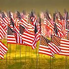 Field of Flags by Rod Reilly