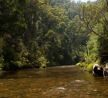 Goulburn River, Victoria by Neville Jones