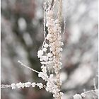 Beautifull Winter III by liesbeth