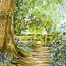 Bluebell Path by FranEvans
