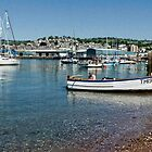 Teignmouth-Devon UK by lynn carter