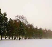 Winter Scene by shelleybabe2