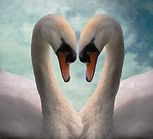 Swan Lovers by Carol Bleasdale