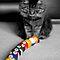 Tie Breaker Selective color challenge - dgscotland