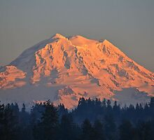 Mount Rainier at Sunset by Kathy Yates
