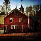 Barn in the Late Afternoon Sun by Debra Fedchin