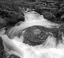 Stream over a Boulder by North22Gallery