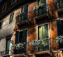 Rooms With A View - Venice, Italy by Lois  Bryan