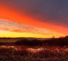 Ebey Slough Sunrise by Dale Lockwood