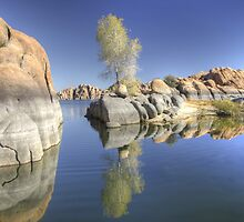 Reflections in Watson Lake by Dawn Crouse