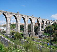 Aqueduct in Lisbon by luissantos84