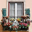 Lisbons window balcony by luissantos84
