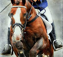 The show jumper by Alan Mattison IPA