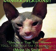 Top Ten Winner - smiling cat by MaryinMaine