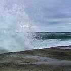 Beware of Rogue Waves by Robyn Forbes