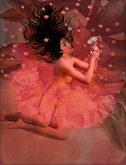 Blooming dreams by Catrin Welz-Stein