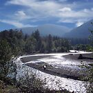 River in Olympic National Park by debidabble