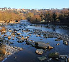 Postcard View, River Swale, Richmond on Swale. 3-Feb-2012 by Ian Alex Blease