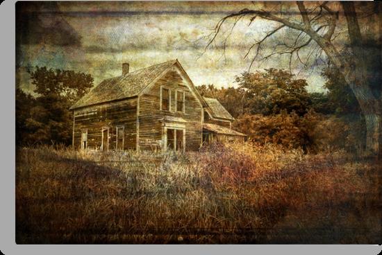 Memories by Lucinda Walter