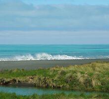 Coastline South Island New Zealand by Alison Murphy