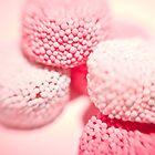 Pink Pleasures  by Josephine Pugh