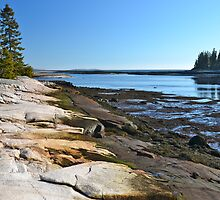 Seawall, Acadia National Park, ME by Dan Hatch